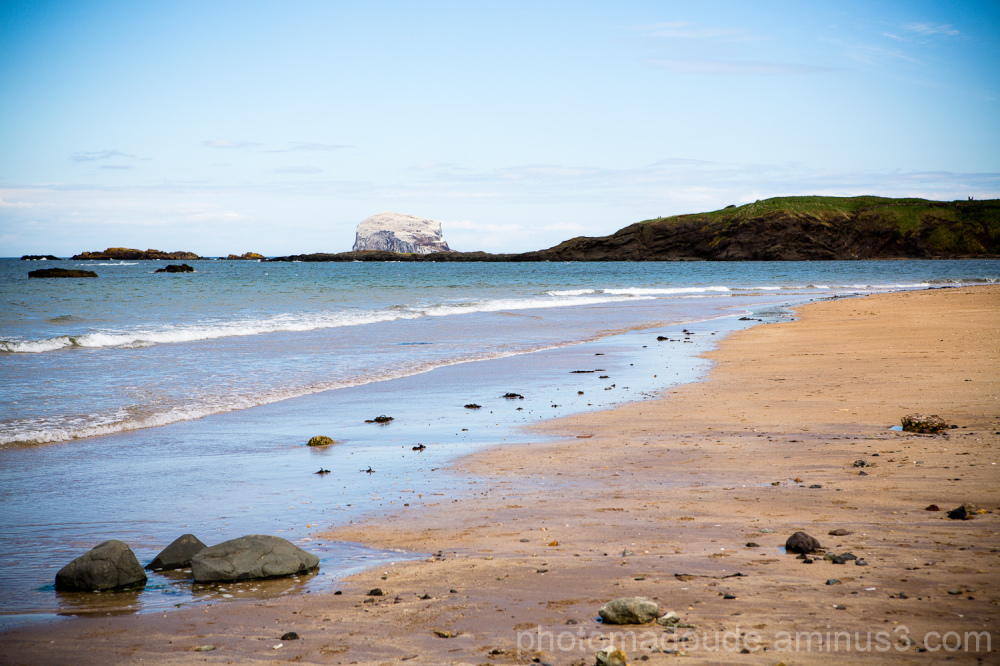 Bass Rock on the Bay