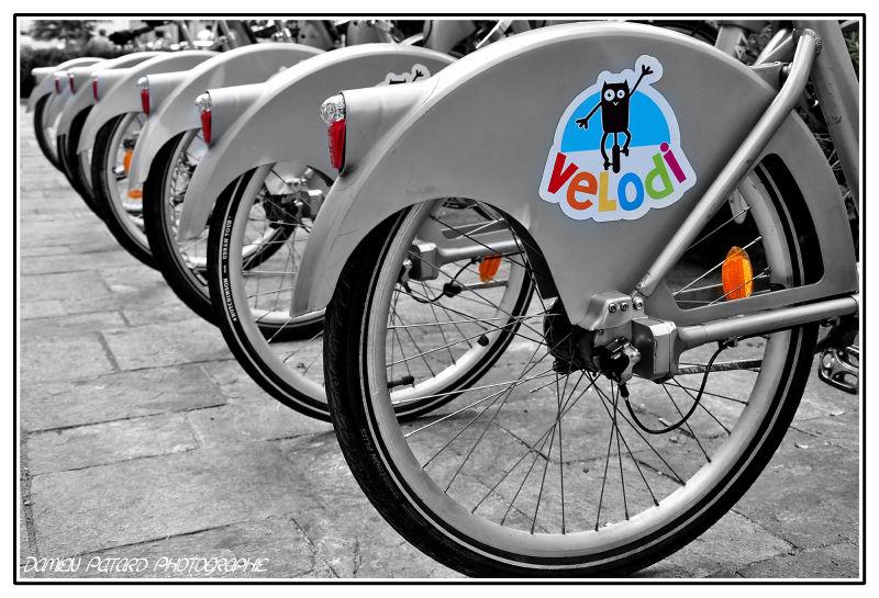 Les vélos d'Elodie...