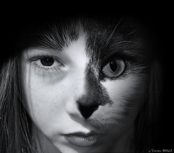 enfant chat montage portrait noir blanc fille