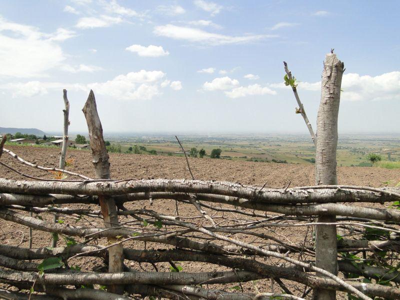 Gorgan plain beyond a wooden fence