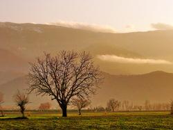 near kordkuy,Golestan,Iran