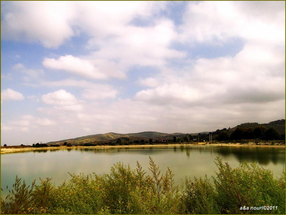 near a pond