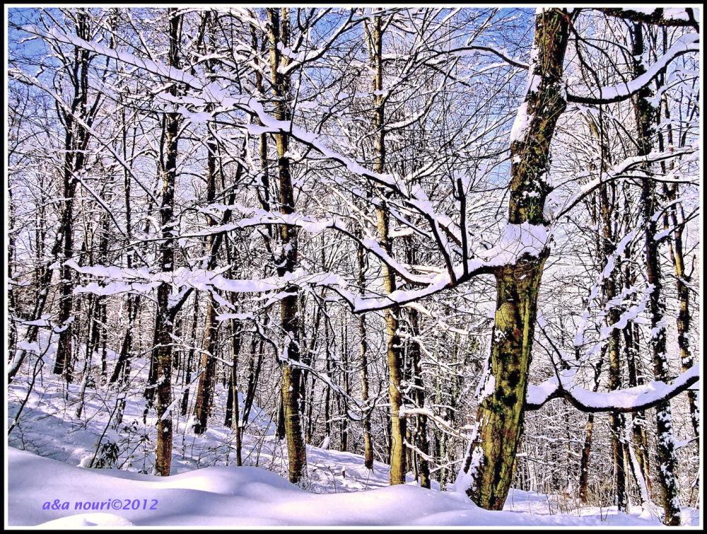 snowy cloth