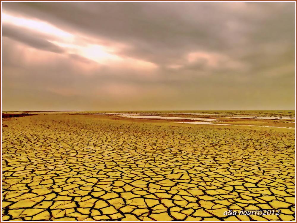 desert footprint on the beach
