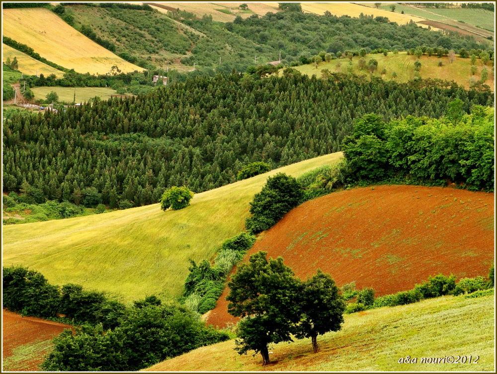 fertile lands
