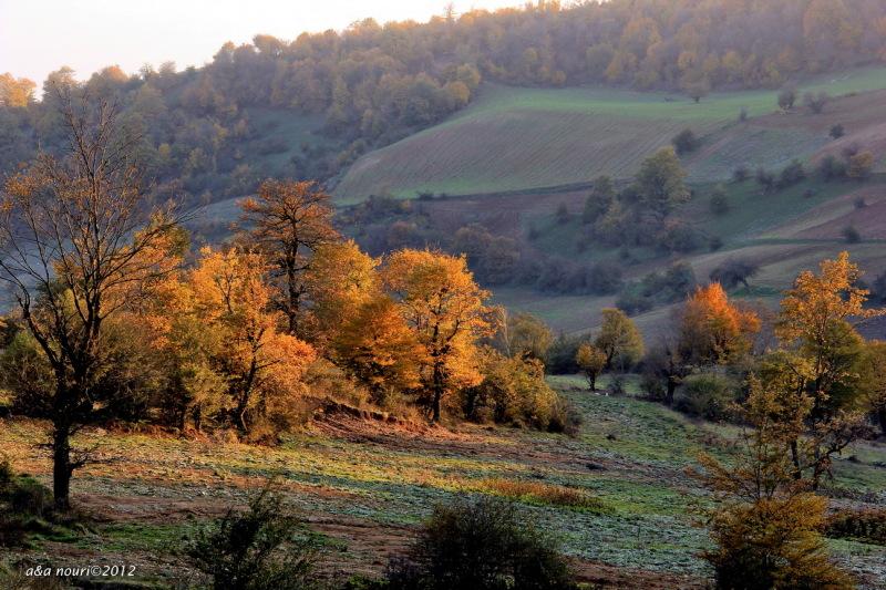 glory of Autumn-15