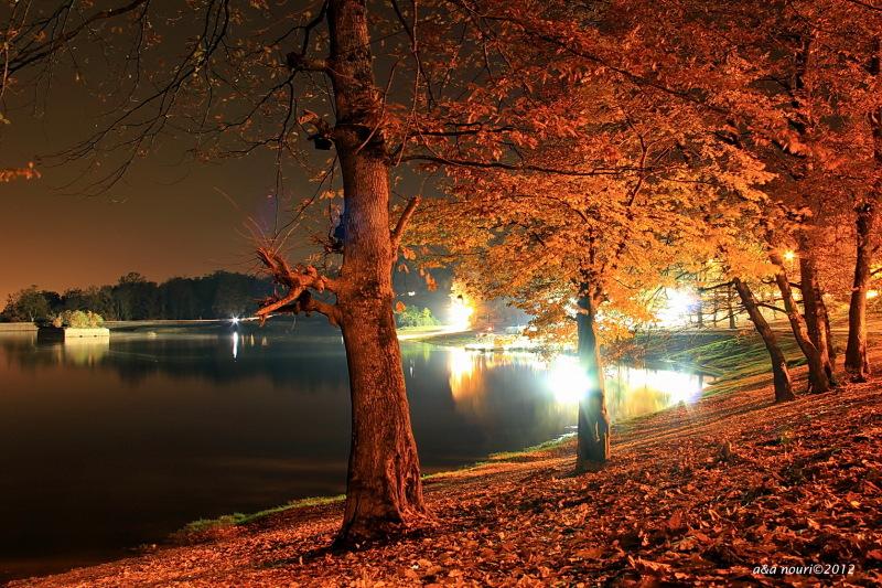 Glory of Autumn-24