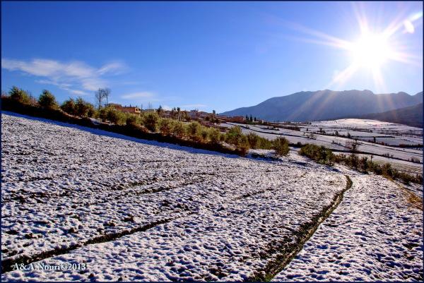 Winter's purity-13