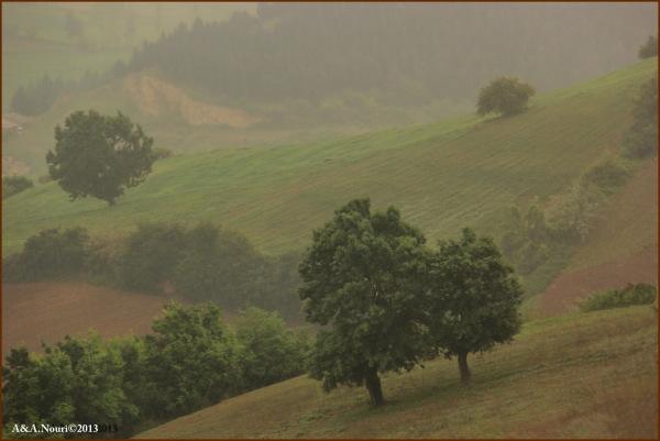 misty rain