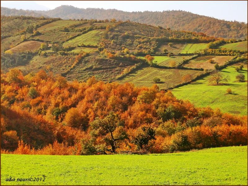 glory of Autumn-32