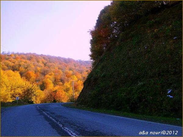 glory of Autumn-40