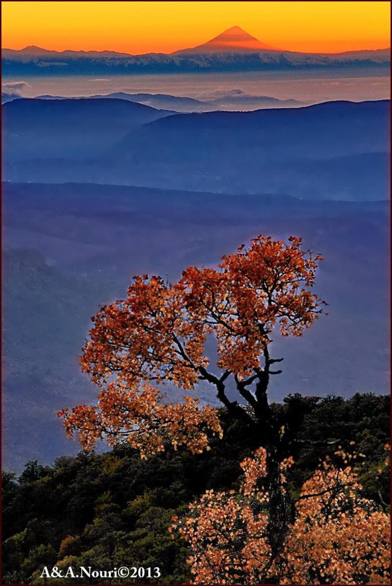 Damavand looking autumn