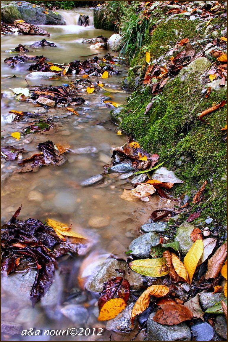glory of Autumn-46