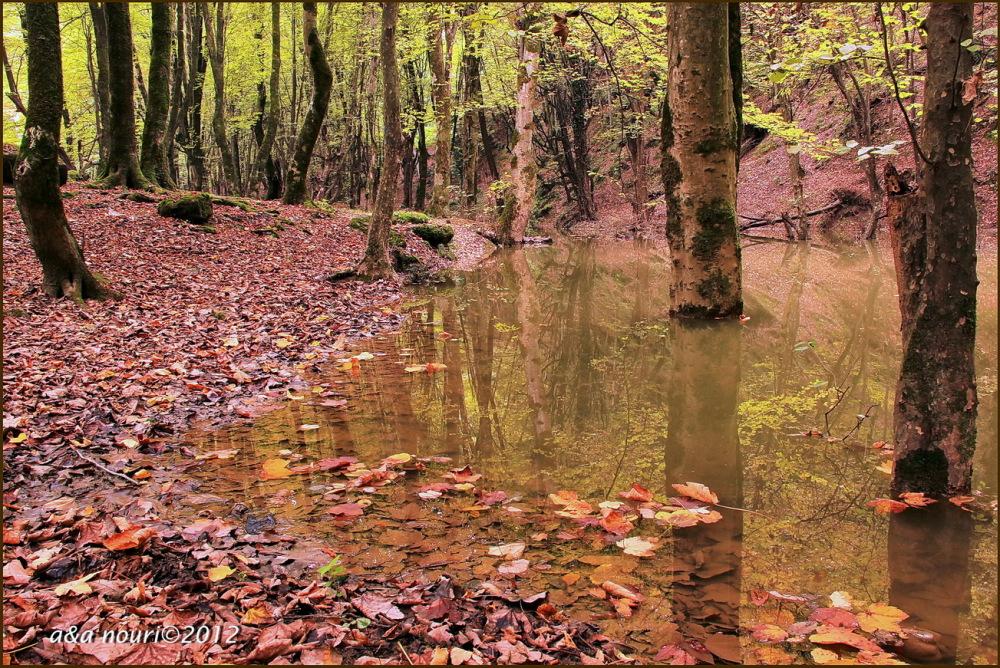 glory of Autumn-54