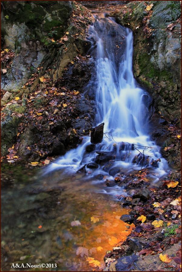 glory of Autumn-82