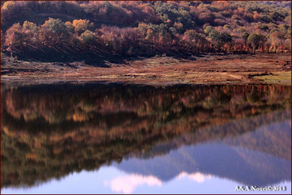 glory of Autumn-84