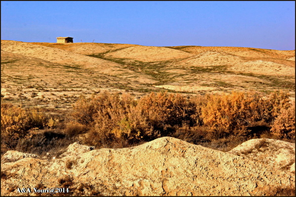 a cottage in desert