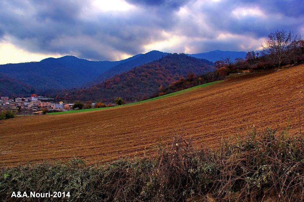 glory of Autumn-132
