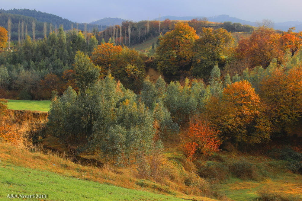 glory of Autumn-95