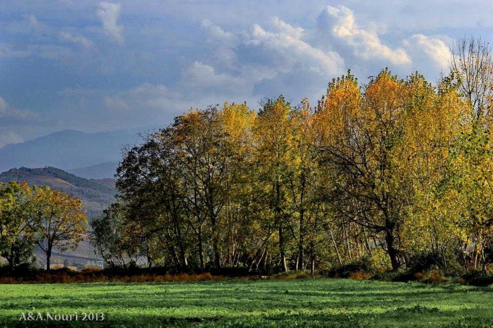 glory of Autumn-113