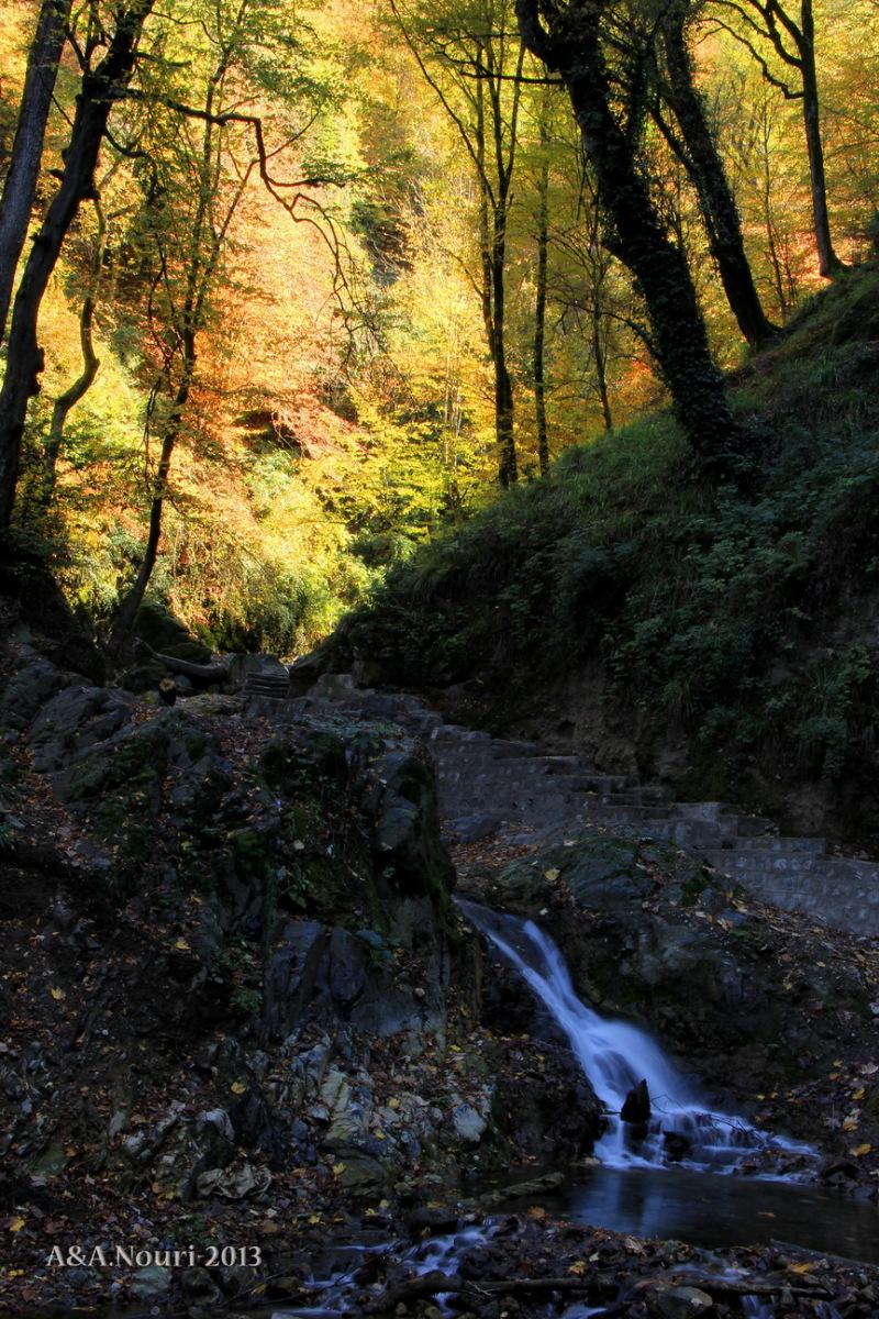 glory of Autumn-118