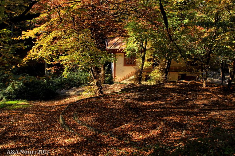 glory of Autumn-121