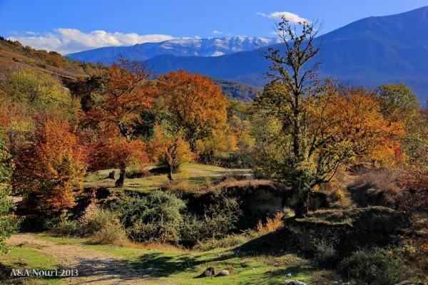 glory of Autumn-123
