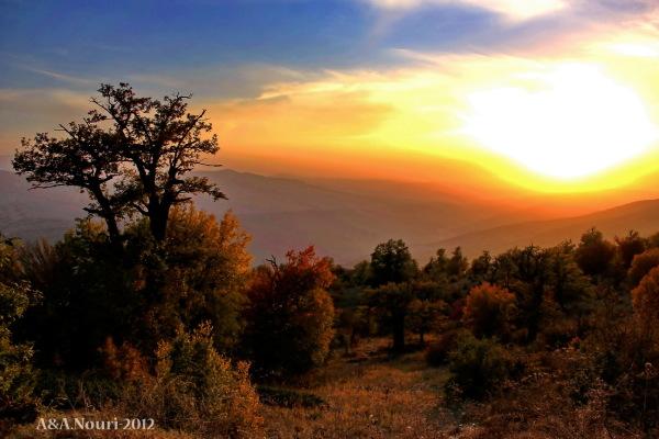 glory of Autumn-129