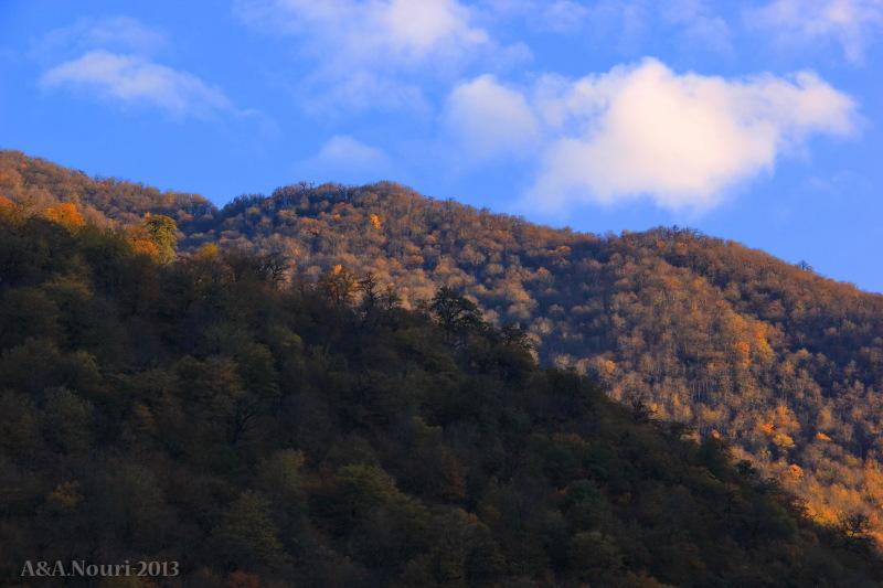 glory of Autumn-150