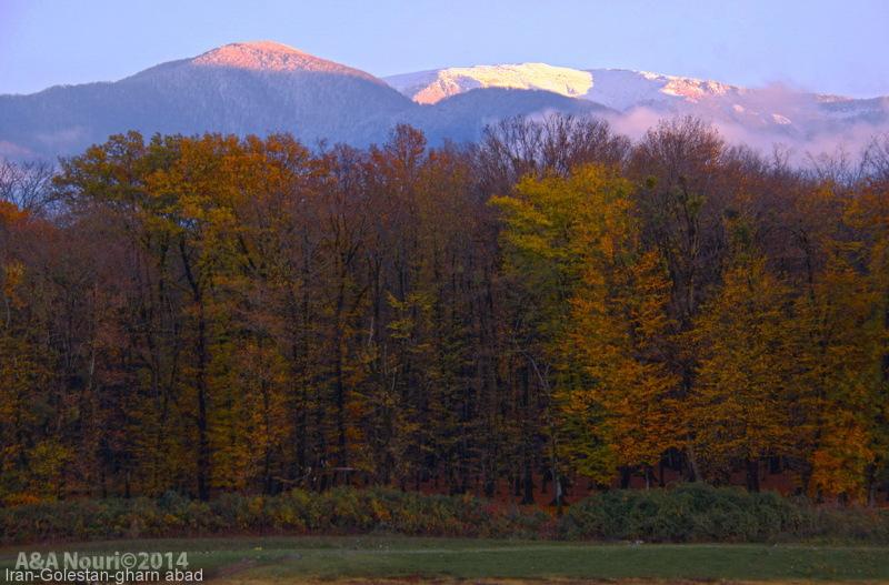 glory of Autumn-177