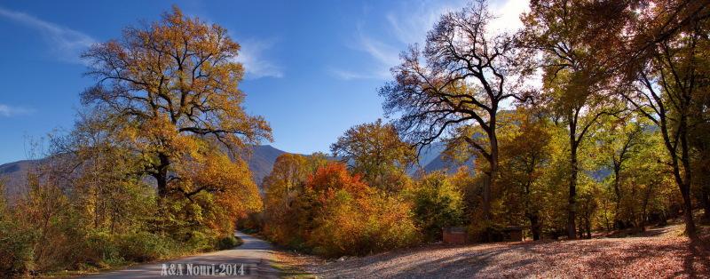 glory of Autumn-179