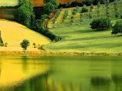 yellow green reflection