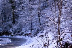 across the  winter