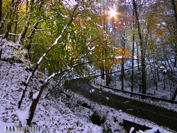first Autumn snow