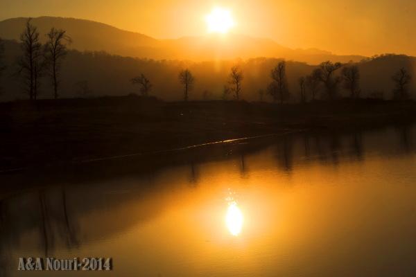 reflection of orange