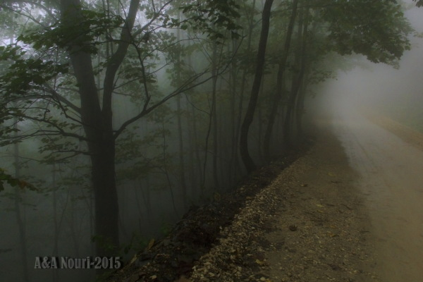 road to mystery