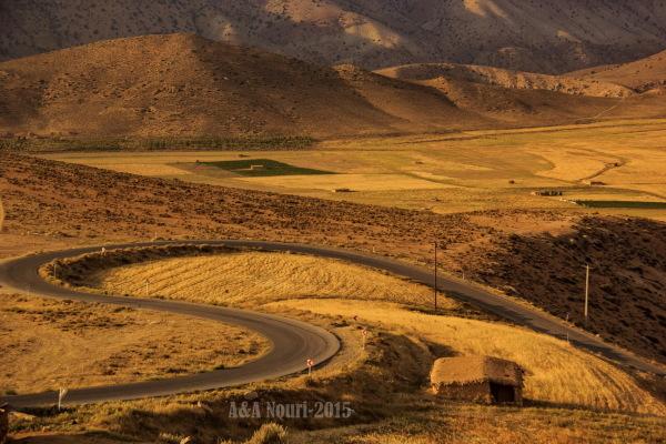 road throgh nature