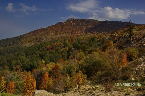 Autumn process