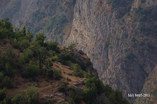 grand cliffs
