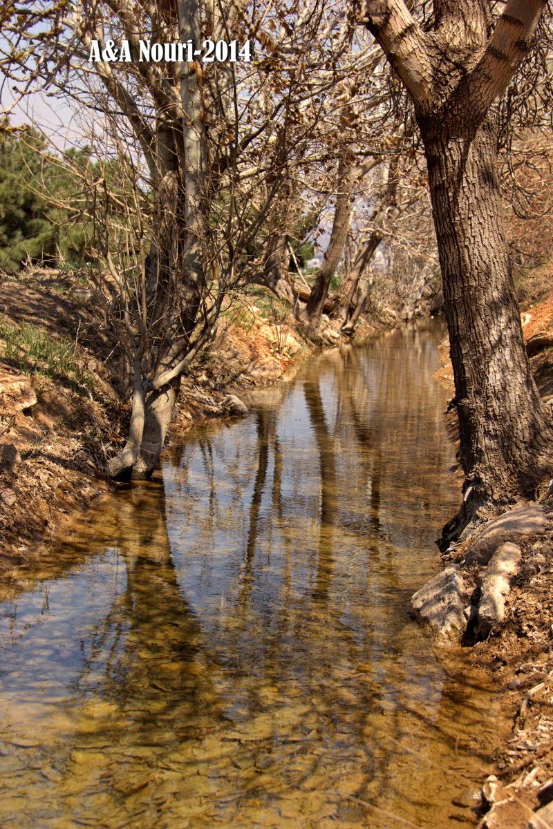 reflection stream