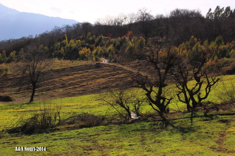 nature of around Gorgan