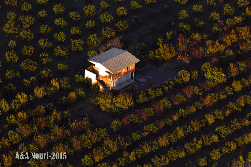 aerial view of a farm
