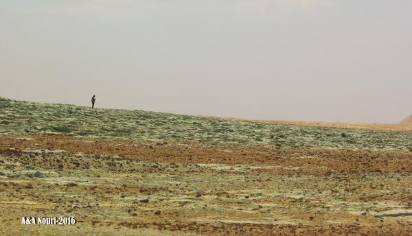 alone in desert