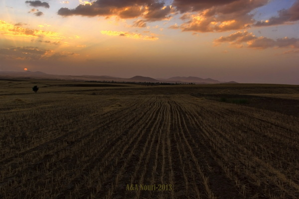 after harvest sunset