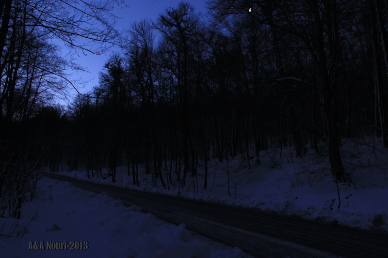 along the winter