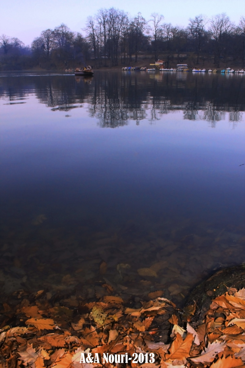 reflection of autumn last days