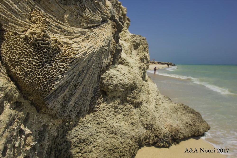 Iran-Persian Gulf-kish island