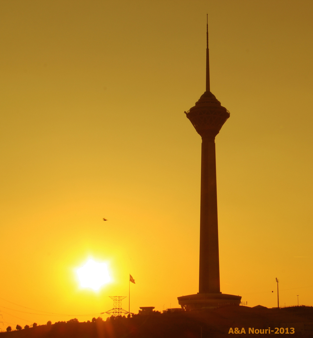 Milad Tower and sunset bird!