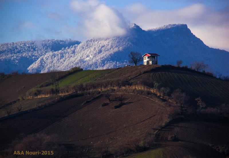 winter background spring foreground