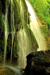 waterfall through green